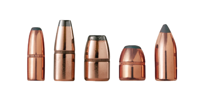 Sabots & Bullets